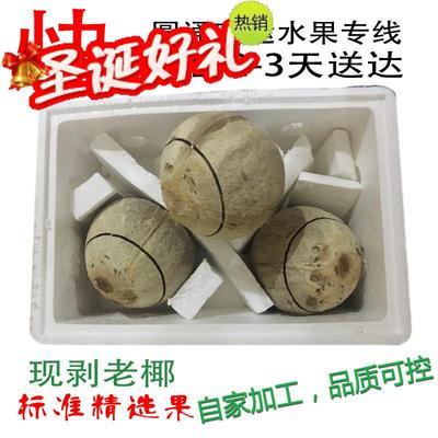 海南文昌新鲜椰子预切口抛光老椰皇炖鸡汤开盖椰青3个装空运包邮