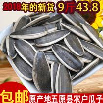 健康零食小吃克罐装250永福元无壳生南瓜子籽仁庆阳特产推荐