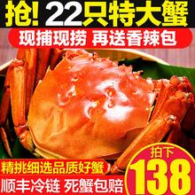 【共22只】现货六月黄大闸蟹特大鲜活海鲜水产螃蟹全公母蟹礼盒装