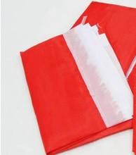 红色广告旗 空白彩旗 刀旗红色飘旗 展会旗 活动旗120*80cm