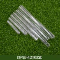 Shi Wang Ant Museum Ant Reproduction Feeding Glass Test Tubes Experiment Tool Tubes Various Specifications