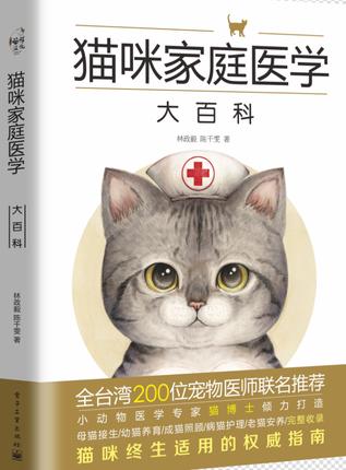 宠物猫猫咪家庭猫咪常见疾病科学喂养