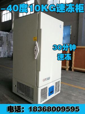 商用立式冷冻冰箱