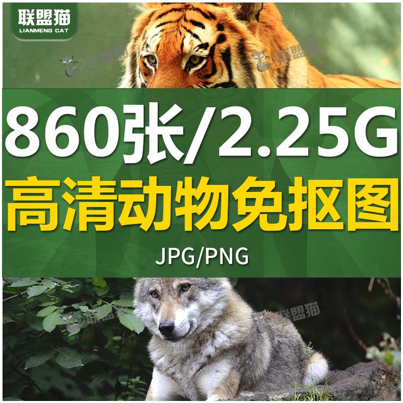 G233 动物JPG+PNG免抠素材稀有动物高清摄影图片PS设计合成素材