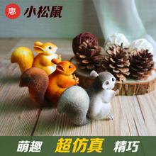 卡萝琳 仿真小松鼠模型道具景观配饰压缩泡沫表面植绒仿真小动物