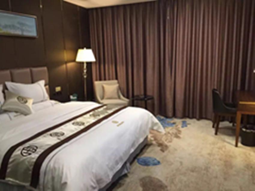 新田御庭精品酒店尊享双床房