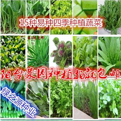 15种蔬菜种子套餐 易种阳台种菜 庭院蔬果菜籽春夏秋四季播包邮