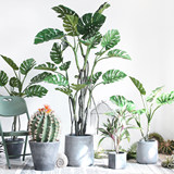 Sicily Nordic simulation plant turtle back leaf potted home indoor landing large green plant office shop decoration