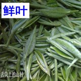 2019 new tea premium buds before the bagged tea Hubei Yichang Wufeng buds tipped bulk green tea 500g