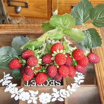田园家居仿真植物假花盆栽小盆景套装室内客厅绿植装饰品花篮摆件