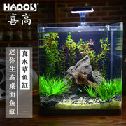Small mini square creative living room office desktop water grass landscaping goldfish tropical fish tank hot sale