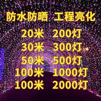 Led small lights flashing lights lights stars outdoor waterproof colorful color neon lights Chinese New Year holiday lights