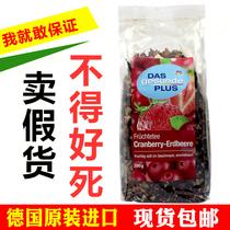 无糖俄罗斯进口果味红茶HYPN公主努里肯尼亚品牌每盒25茶包水果茶