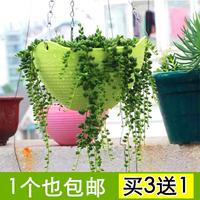 壁挂吊兰花盆