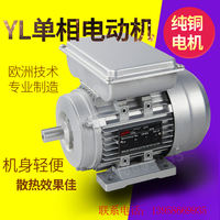 YL/YY250/370/550/750w/1.1/1.5KW household electric single phase motor 220V aluminum shell 1400 turn