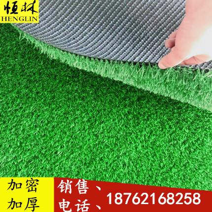 塑胶人工草皮 仿真草坪地毯 幼儿园室内室外假草皮户外假草坪阳台