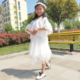 Children's Short Skirt Summer 2019 New Girl's Irregular Medium-length Skirt, Fluffy Skirt, Parent-child Half-length Skirt