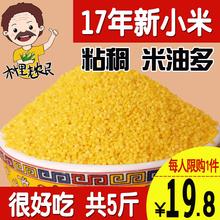 黃小米5斤五谷雜糧小米粥食用小米農家月子米粗糧食吃小黃米新米