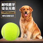 狗狗玩具球金毛泰迪弹力球耐咬磨牙网球宠物幼犬拉布拉多小狗玩具