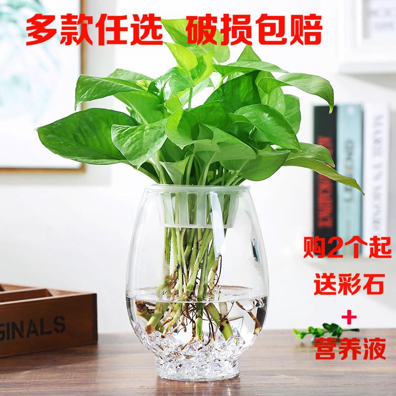 桌面水培花瓶