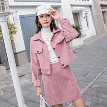 大码女装胖mm2018秋季新款洋气两件套微胖妹妹时尚半身裙时髦套装