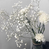 Natural plant dried bouquet romantic white starry small daisies home furnishings decorated with large bouquets