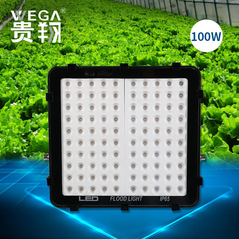 全光谱蔬菜大棚麻多肉植物工厂投光泛光补光灯 LED 植物生长灯贵翔