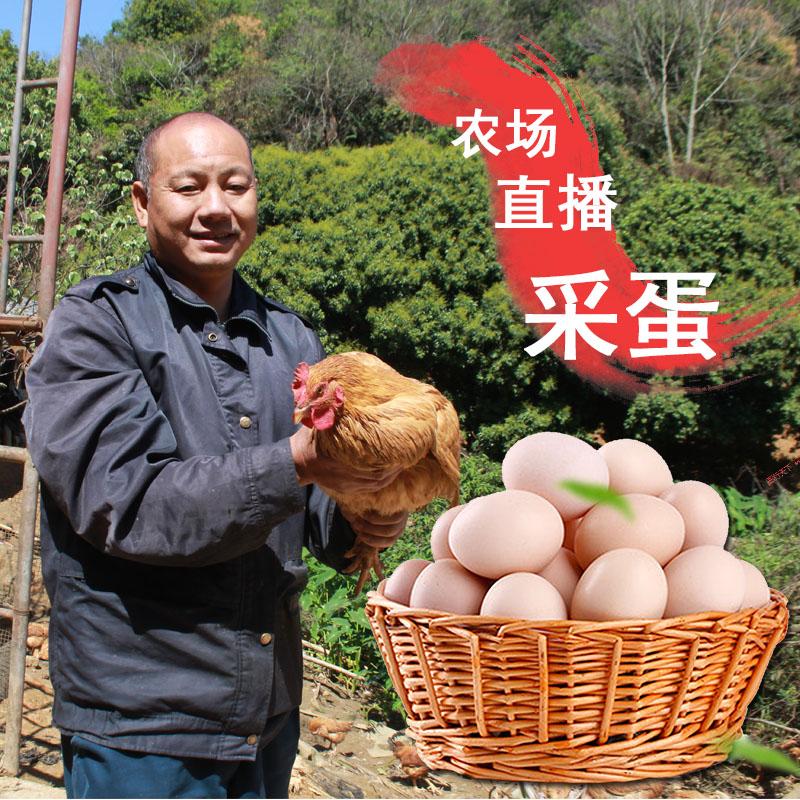 农村散养土鸡蛋新鲜坐月子宝宝辅食初生蛋野外放养农家草鸡蛋10枚