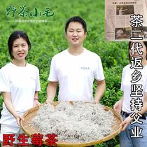 野茶小毛张家界野生莓茶嫩叶原生态莓茶藤茶土家霉茶60g买一送一
