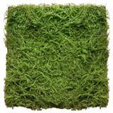 掬 Refined simulation turf turf green grass stone indoor gardening decoration micro landscape shooting props