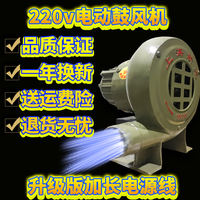 Blower small household 220V electric high power coal stove barbecue special blowing carbon machine firewood stove fire