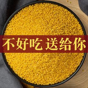 山西小米沁州黄小米农家特产 2018食用米吃的小米粥小黄米新米2斤