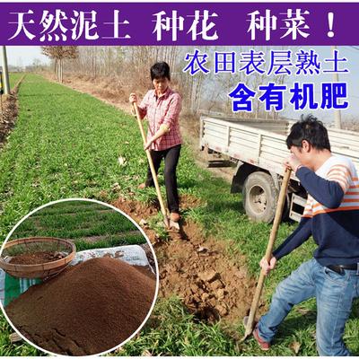 园土黄土泥土种植土花卉土阳台种菜种花土包邮多肉肥料盆栽营养土