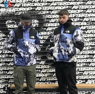 Supreme The North Face 17FW Sup x Tnf 联名 雪山冲锋衣 羽绒服
