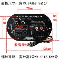 2008 dual microphone jack high power FM Bluetooth power amplifier board 12V24V220V subwoofer core 6 inch 8 inch 10 inch