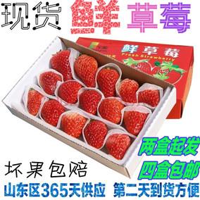 烘焙草莓蛋糕草莓 新鲜草莓 草莓夏季草莓 四季草莓满4包邮