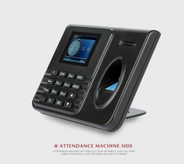 包邮正品天美TM5900指纹考勤机 指纹机 免软件 U盘下载 简单方便