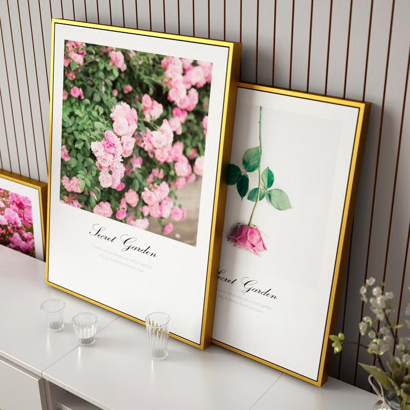 玫瑰花卉壁画