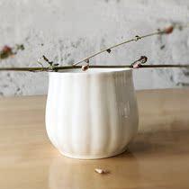 骨瓷小罐子水培植物小花瓶装饰器皿干枝插花桌面装饰