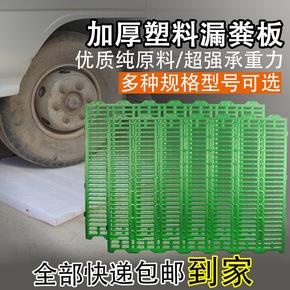 塑料漏粪板猪用加厚母猪产床漏粪地板仔猪保育床漏粪板小猪接粪板