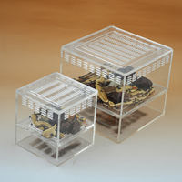 Shi Wang Ant Museum Breadworm Jiulong Insect Breeding Box Yangcai Acrylic Breeding Box 15*15*13.5CM