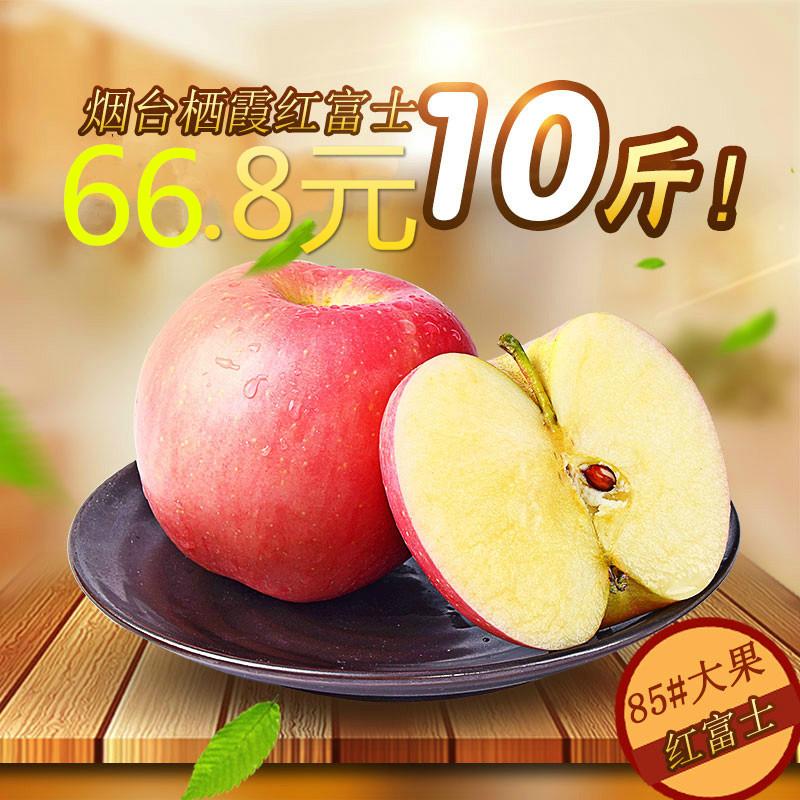 垛山 山东烟台红富士苹果新鲜水果10斤包邮批发生鲜水果萍果吃的