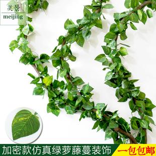 仿真绿萝叶藤条装饰壁挂花藤藤蔓树藤叶子假树叶绿植物假花藤