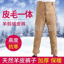 新品羊剪绒皮毛一体内胆户外中老年皮裤男女高腰绵羊毛棉裤保暖裤