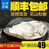 金鹏 乳山牡蛎鲜活生蚝5斤 顺丰包邮新鲜生蚝肉海鲜水产海蛎子