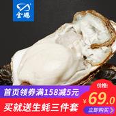金鹏 乳山牡蛎鲜活生蚝 现捞海蛎子生蚝肉海鲜水产贝类 5斤 10斤