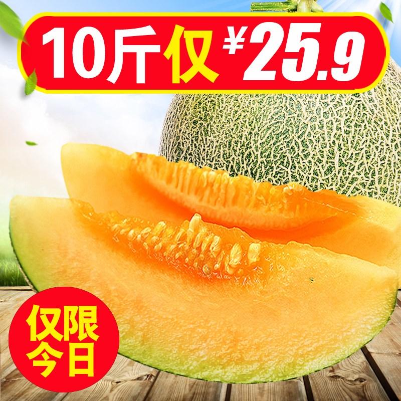 新疆哈密瓜新鲜水果包邮10斤甜瓜网纹瓜沙漠黄金蜜瓜西州黄河蜜瓜