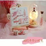 Handmade witch home delivery DIY eternal flower material package night light crystal lamp