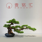 New Chinese-style simulation of green plant welcome song Luohansong indoor table top table case tea room plant small bonsai decorative ornaments