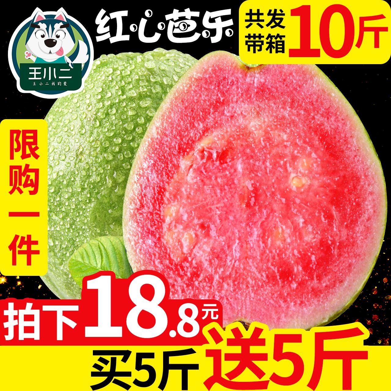 买1送1 广西红心芭乐果番石榴水果新鲜批发包邮当应季带箱10斤